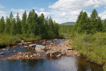 Taiga creek with a rocky bed in South Yakutia, Russia Stock Photo