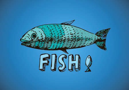 fish illustration on a blue gradient background Illustration
