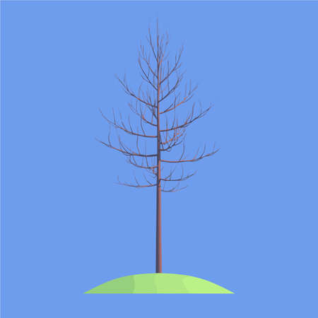 a tree without leaves on a grassy space on a blue background isolated