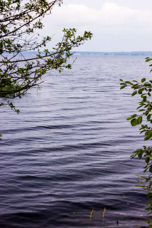 supple: the texture of lake water with little waves rippling