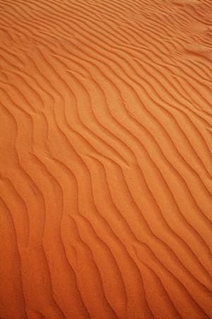 Dunes in Vietnam photo
