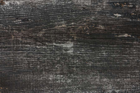 wood panel: Old wooden wall. Background.