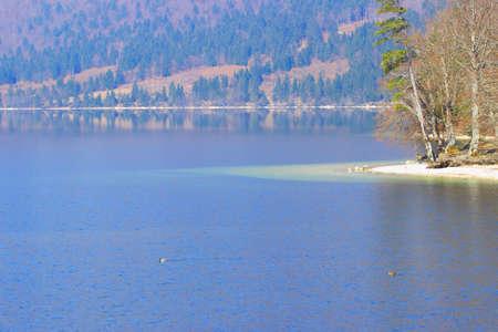 bohinj: Beach on the Lake Bohinj in Slovenia