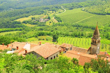 Roofs in Motovun town in Istria, Croatia. Vineyard landscape in background