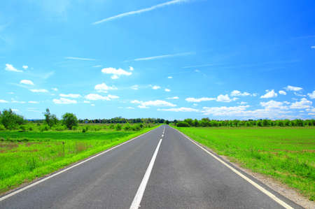 Road through the green fields