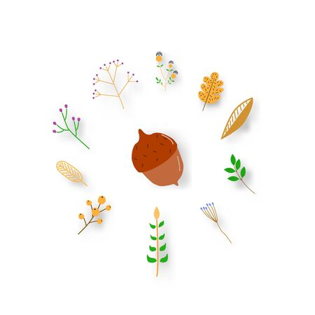 Collection beautiful colorful autumn leaves on white background. vector illustration