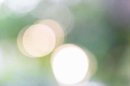 Soft blurred green and gold color background with bokeh. Abstract gradient desktop wallpaper.