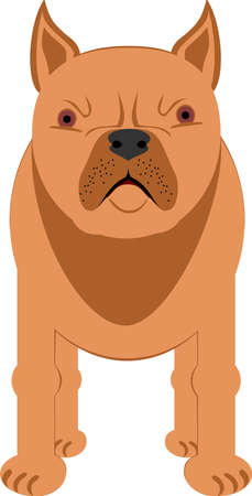 The illustration shows a large dog. The Staffordshire Terrier.