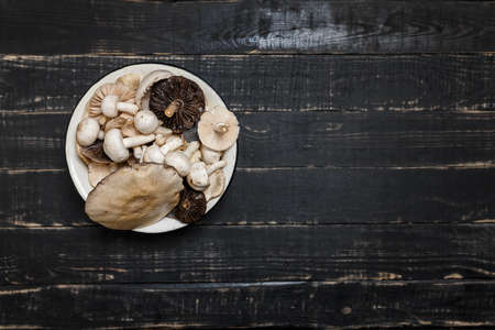 Raw mushrooms on the black wooden table or boards. Young champignons, Tricholoma. Different forest big and small mushrooms together in enameled bowl. Stock Photo