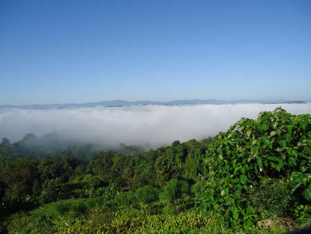 foggy river view from hilltop