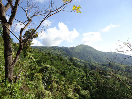 A hilltop scenery from Bandarban forest