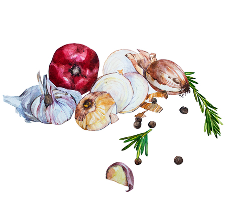 Aquarelle courge musquée soupe illustration nourriture isolé sur fond blanc avec des légumes (tomate, oignon, ail). Le menu. la composition des aliments. Illustration tirée Aquarelle main Banque d'images - 61665498