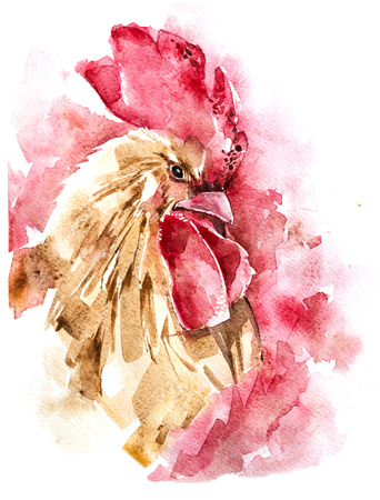 Beautiful colorful and bright watercolor rooster. Hand drawn illustration for your graphic design. Cock - Symbol of New Year 2017. 스톡 콘텐츠