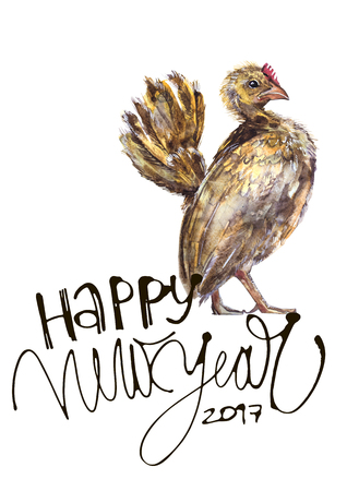 auspicious sign: Beautiful colorful and bright watercolor rooster. Hand drawn illustration for your graphic design. Cock - Symbol of New Year 2017. Hand lettering Stock Photo