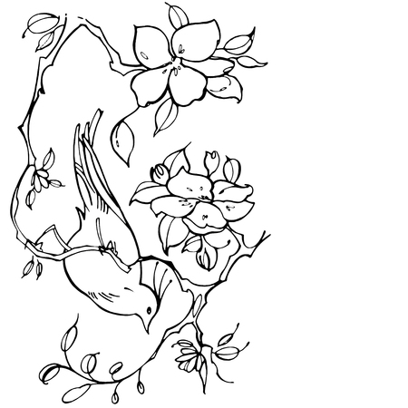 chinoiserie: Hand drawn graphic flowers with bird on white background Illustration