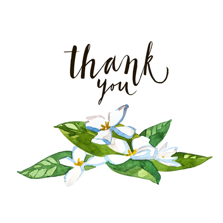 Thank You calligraphy. Brush painted letters with flowers. Isoleted on white background