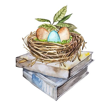 Hand drawn watercolor art bird nest with eggs on the books, easter design. Isolated illustration on white background. Stock Photo