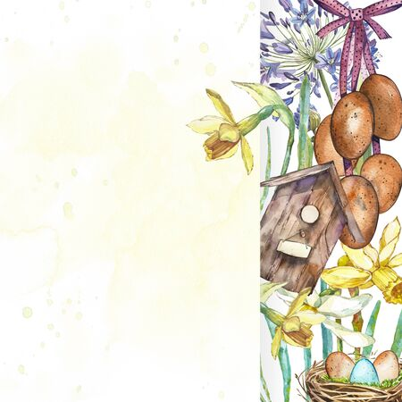 reproduce: Spring flowers narcissus with nest, birdhouse, eggs. Watercolor hand drawn illustration card. Stock Photo