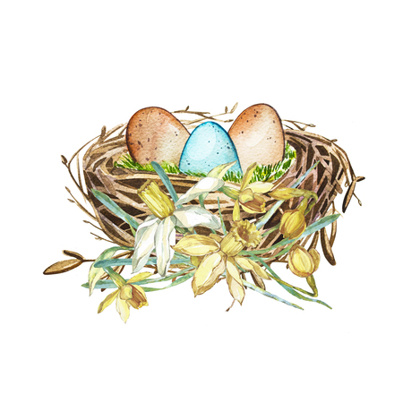 bird song: Hand drawn watercolor art bird nest with eggs and spring flowers , easter design. Isolated illustration on white background. Stock Photo