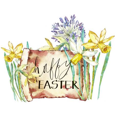 Spring flowers narcissus. Isolated on white background. Watercolor hand drawn illustration. Easter design. Lettering - Happy Easter.