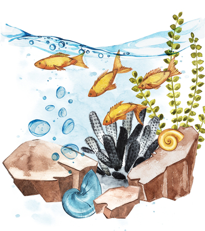 funny baby: Marine Life Landscape - the ocean and the underwater world with different inhabitants. Aquarium concept for posters, T-shirts, labels, websites, postcards.