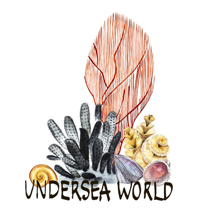 Word-Undersea world. Compositions Seaweed sea life and corals object isolated on white background. Watercolor hand drawn painted illustration. Underwater watercolor background illustration