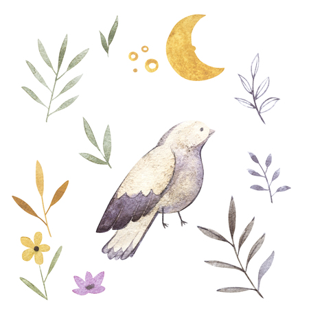 Watercolor illustrations of bird, branch, moon, flowers and floral. Isolated on white background