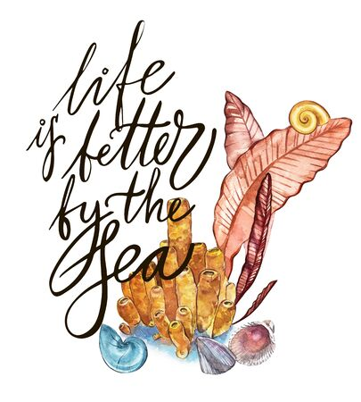 Word-life is better by the sea. Compositions Seaweed sea life and corals object isolated on white background. Watercolor hand drawn painted illustration. Underwater watercolor background illustration. Stock Illustration - 80684228
