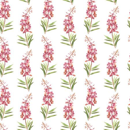 柳 nerb 花の水彩画のイラスト。花と花のカードです。ボタニカル イラスト シームレス パターン。 写真素材 - 83740751