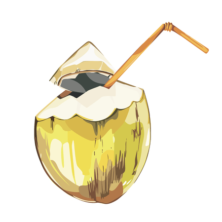 Vector coconut hand drawn sketch. Watercolor vector tropical food illustration. Isolated on white background.