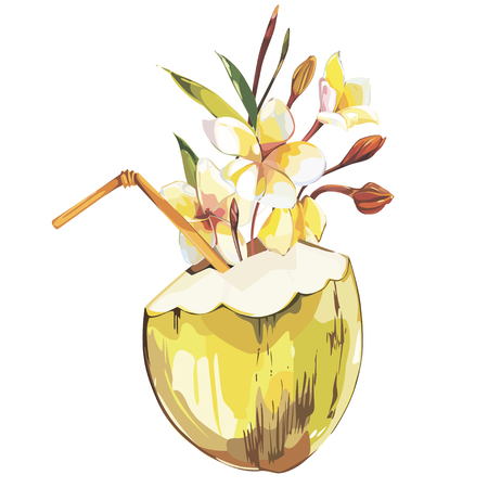 Vector coconut hand drawn sketch with plumeria flowers. Watercolor vector tropical food illustration. Isolated on white background.