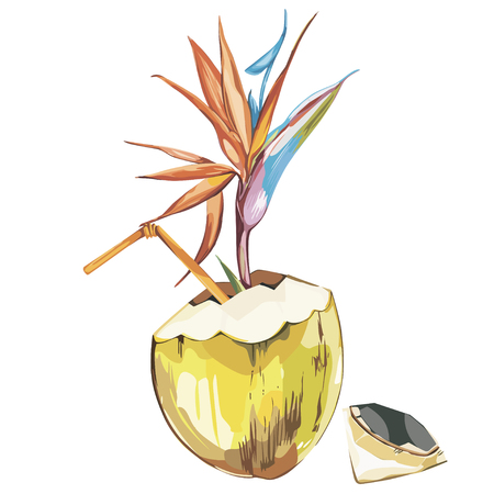 Vector coconut hand drawn sketch with strelitzia flowers. Watercolor vector tropical food illustration. Isolated on white background