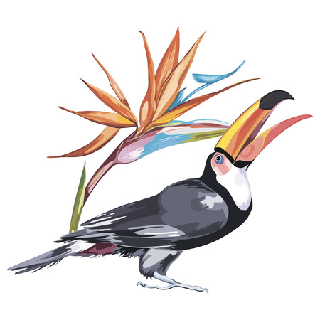 Toucan with tropical flowers strelitzia. Element for design of invitations, movie posters, fabrics and other objects. Isolated on white Illustration