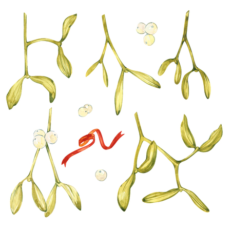 Watercolor illustration of green mistletoe. The Symbol of a Kiss. Christmas set isolated on white background. Hand Painted lement for a postcard. Stock Photo