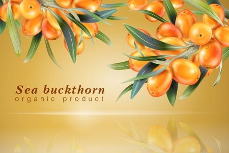 Sea buckthorn realistic image. Illustration