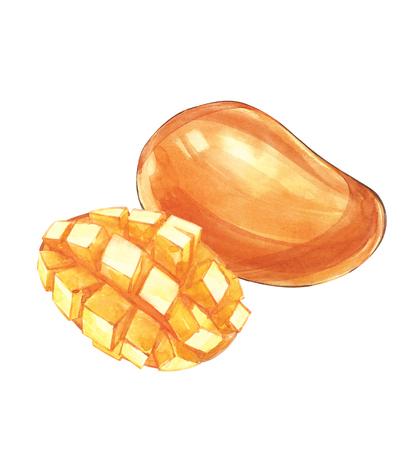 leaf logo: Mango cubes vintage design template. Watercolor botanical illustration. Mango Fruit Isolated on white background. Stock Photo