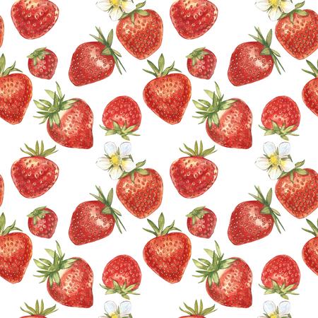 빨간 베리 딸기 흰색 배경에 고립의 집합입니다. 손으로 그린 수채화 그림 열매의 그림입니다. 원활한 패턴