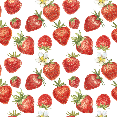 Set of Red berry strawberry isolated on white background. Hand drawn watercolor painting illustration of berries. Seamless patterns