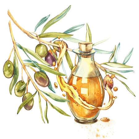 A branch of ripe green olives is juicy poured with oil. Drops and splashes of olive oil. Watercolor and botanical illustration isolated on white background.