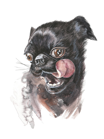 Amazing dog face with round eyes . Dog black French bulldog. Graphic portrait dog, hand drawing illustration. Watercolor isolated on a white background. Drawing in realistic style. Zdjęcie Seryjne