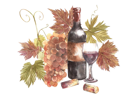 Bottles and glasses of wine and assortment of grapes, isolated on white. Hand drawn watercolor illustration.