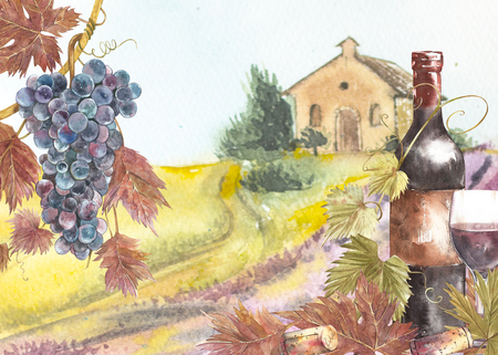 Bottles and leaves of grapes. Background with a lavender field. Watercolor illustration for postcards, scrabbuking. Hand drawn watercolor illustration. Banners of wine vintage background. Stok Fotoğraf