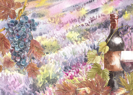 Bottles and leaves of grapes. Background with a lavender field. Watercolor illustration for postcards, scrabbuking. Hand drawn watercolor illustration. Banners of wine vintage background. Stock Photo