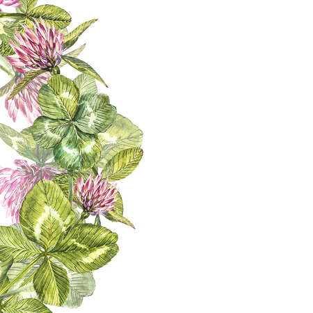 Hand-drawn watercolor red clover flower illustration. Painted botanical three-leaved meadow grass, isolated on white background. Happy St.Patrick s Day card compositions.