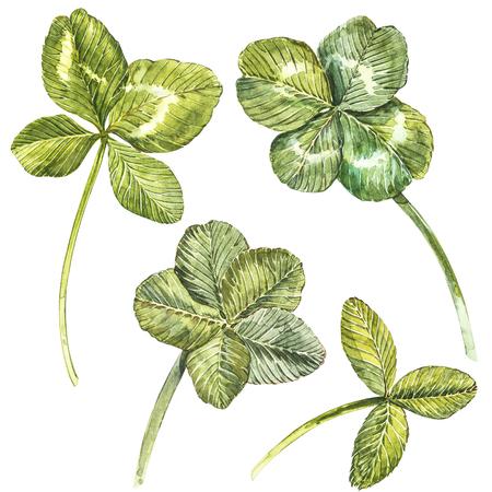 A set of clover leaves - four-leafed and trefoil. Watercolor illustration. Design element Happy Saint Patricks Day