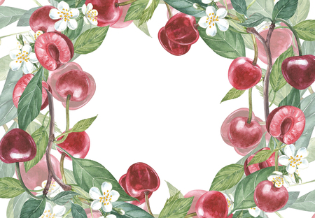 Cherry frame botanical illustration. Card design with Cherry flowers and leaf. Watercolor botanical illustration isolated on white background.
