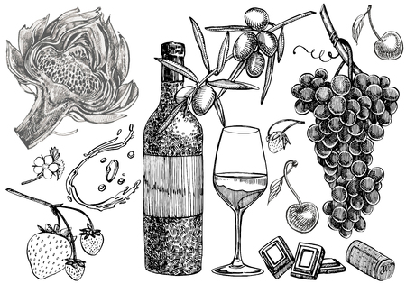 Vector set of vine products. Illustration in sketch style. Hand drawn design elements. Isolated on white background. Engraving style illustrations Ilustração
