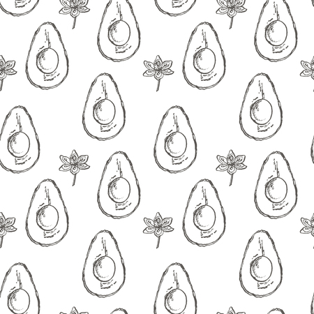Avocado seamless pattern. Vector hand drawn illustrations. Avocado, sliced pieces, half, leaf and seed sketch. Tropical summer fruit engraved style illustration Ilustração