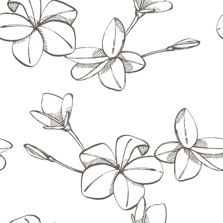 Jungle flowers plumeria seamless floral pattern background. Tropical flowers background. Graphic illustration in trendy style Stock Photo