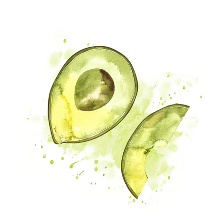 Avocado watercolor hand draw illustration isolated on white background Reklamní fotografie